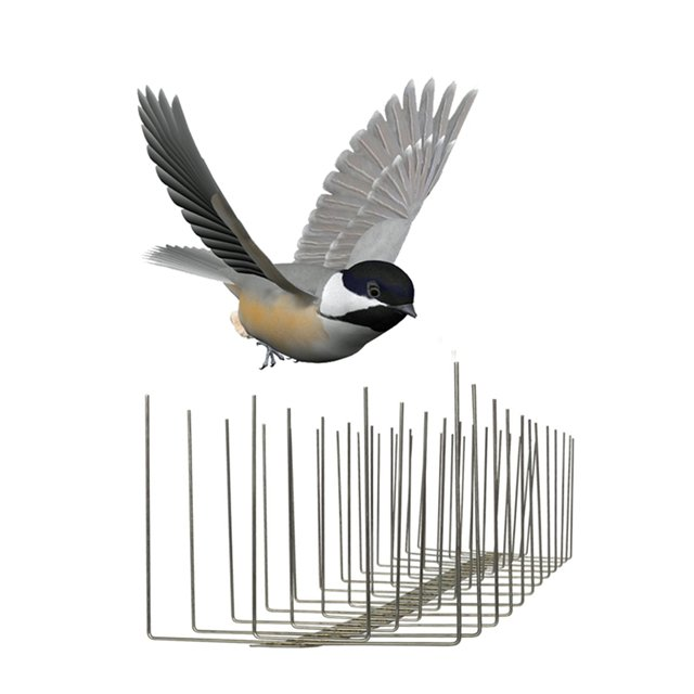 SHSS-16: Pest Bird Control Equipment Stainless Steel Wall Spikes